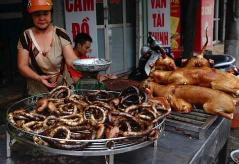 Dog meat in a Vietnamese market